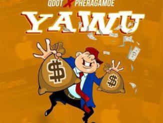 Qdot – Yawu Ft. Pheragamoe