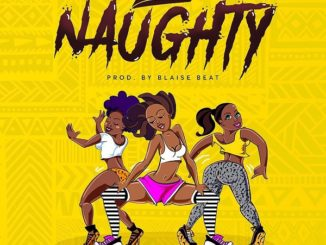 Soft – Naughty (Prod. Blaise Beatz)