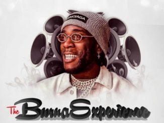DJ Teeyrych – The Burna Experience (Burna Boy Mixtape)