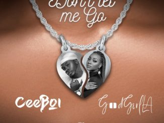 Ceeboi – Don't Let Me Go ft Goodgirl LA
