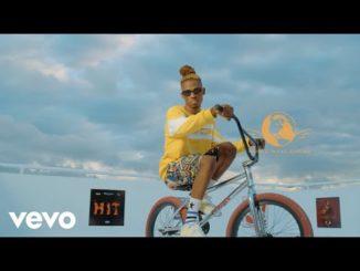 Video: Krizbeatz ft. Tekno & Teni – HIT (ADM Remix)