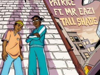Patrice Ft. Mr Eazi – Tall Shade