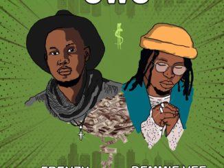Frenzy Ft Demmie Vee – Owo