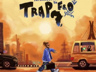Yung6ix – Introduction To Trapfro