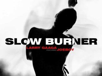 Larry Gaaga – Slow Burner ft. Joeboy