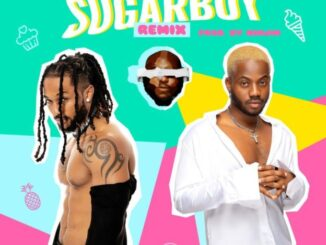 Minjin Ft. Korede Bello & Dj Big N – Sugarboy (Remix)