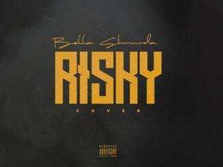 Bella Shmurda ft. Davido – Risky (Cover)