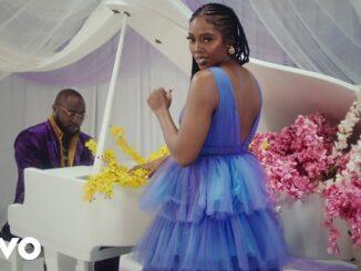 VIDEO: Tiwa Savage – Park Well ft. Davido