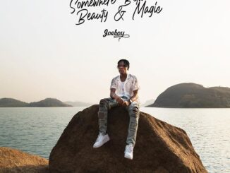 Joeboy – Somewhere Between Beauty and Magic