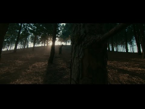 VIDEO: Fireboy DML – Champion ft. D Smoke