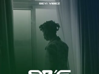 Seyi Vibez – 90'S