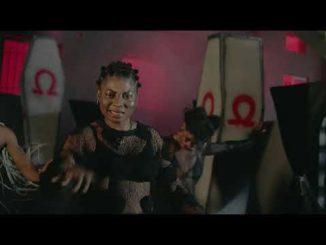 VIDEO: Seyi Vibez – Professor Peller ft. Zlatan
